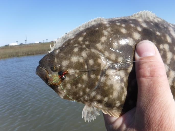 Sneaky Flounder